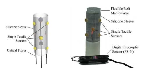 Bio-inspired Sensor 2